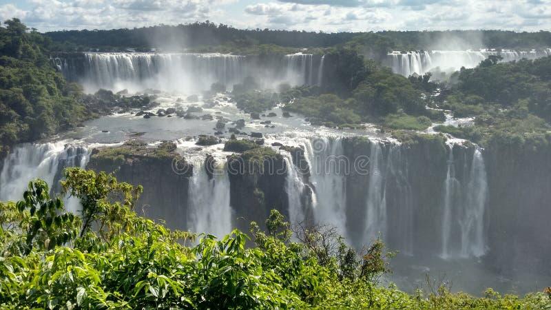 Iguassu nedgångar som lokaliseras i Brasilien fotografering för bildbyråer