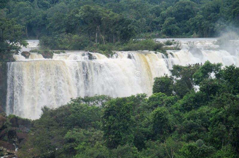 Iguassu waterfall royalty free stock image