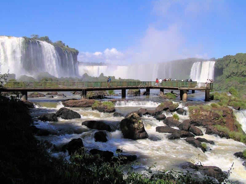 Iguazu瀑布 免版税图库摄影