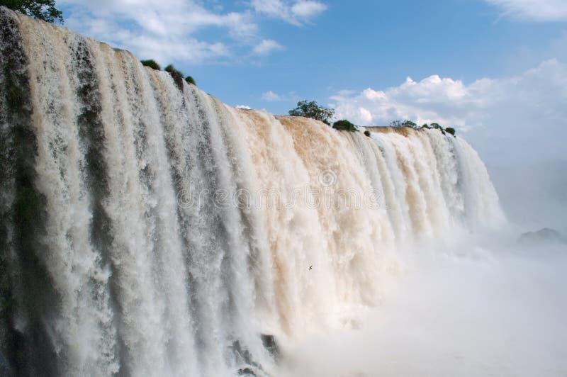 Iguazu, Argentine, Amérique du Sud images stock