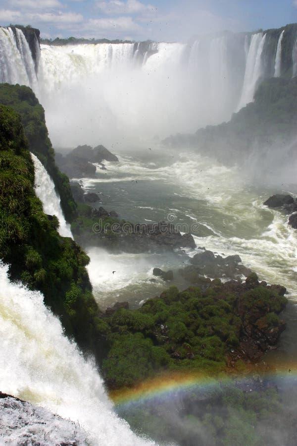 Free Iguazu Falls Royalty Free Stock Image - 12501596