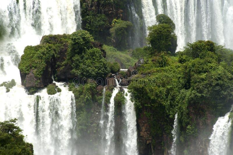 Iguazu Falls Argentina arkivbild
