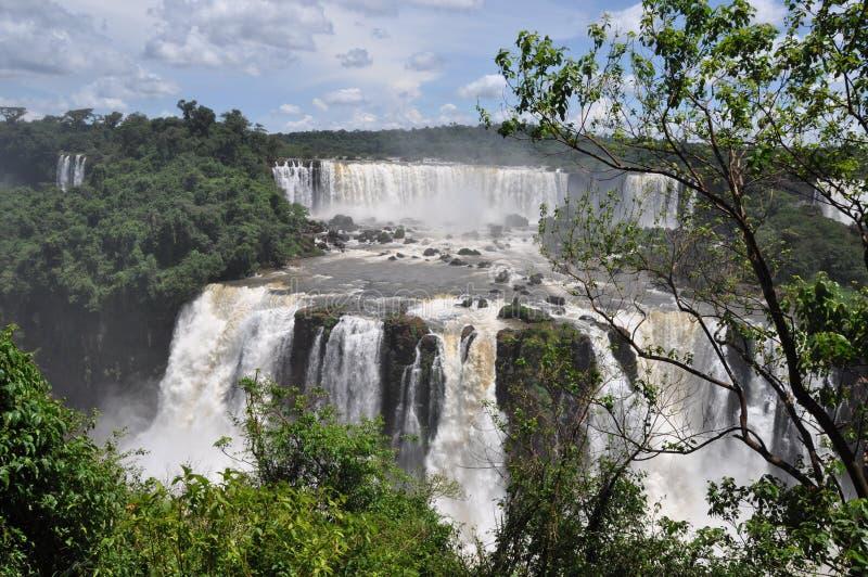 Iguazu Falls brasiliansida arkivfoto