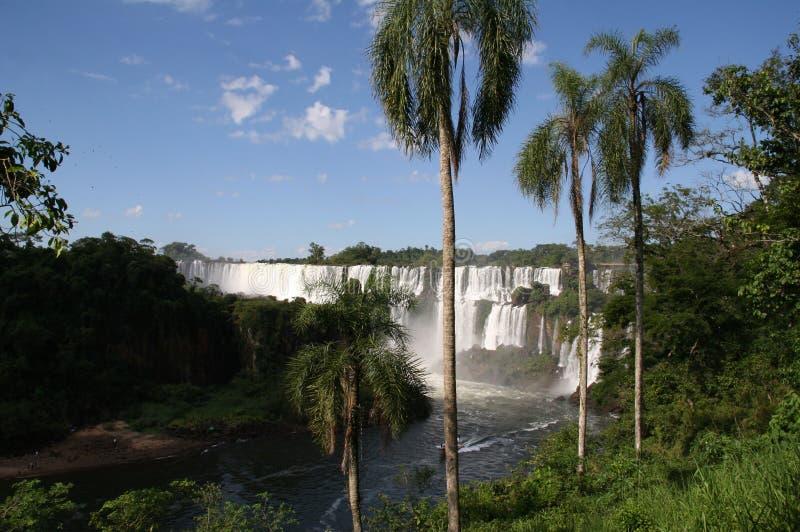 Iguazu Falls de la Argentina imagen de archivo libre de regalías