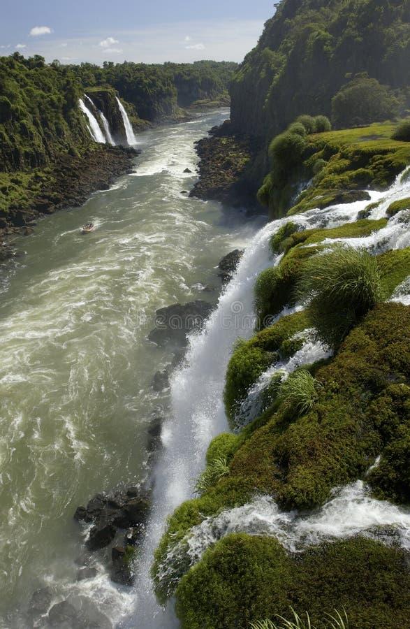 Iguazu Falls - el Brasil fotografía de archivo