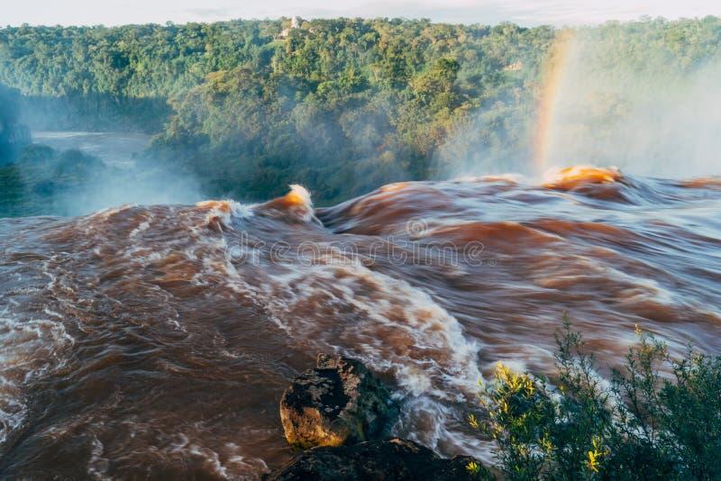 Iguazu Falls i det Argentina Misiones landskapet royaltyfri fotografi