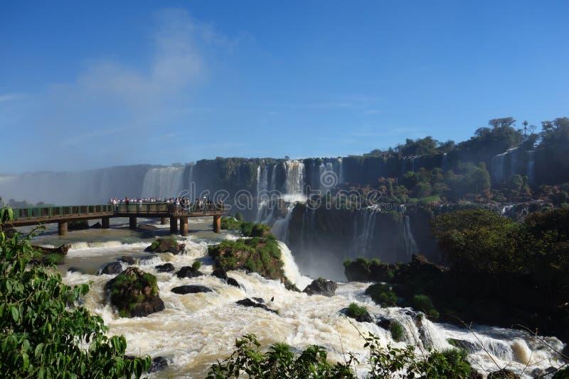 Iguazu Falls på den brasilianska sidan arkivfoto