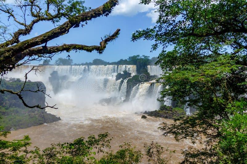 Iguazu Falls sikt från argentinian sida - Brasilien och Argentina gränsar royaltyfria bilder