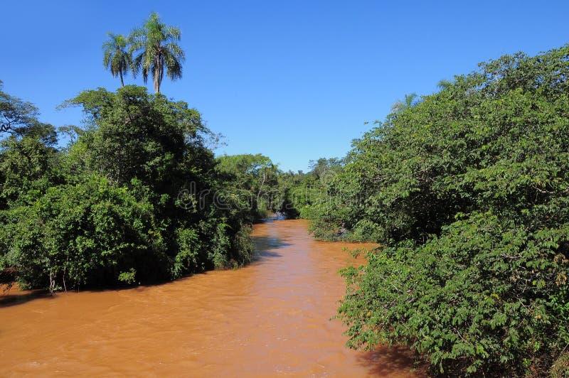 Iguazu-Fluss. lizenzfreie stockfotografie