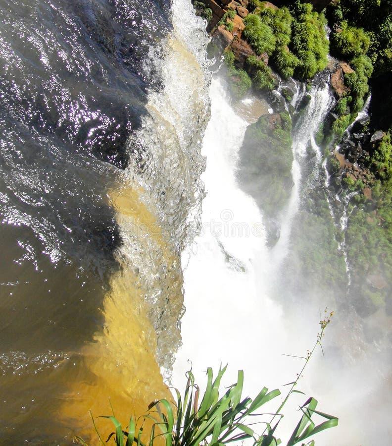 Iguazu Spada na granicie Brazylia i Argentyna w Argentyna obrazy royalty free