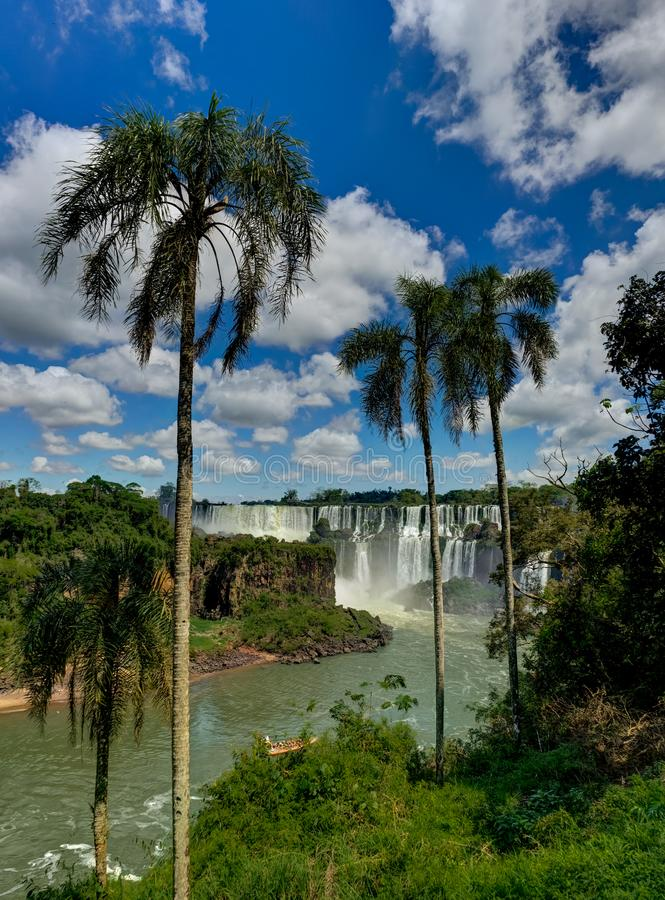 Free Iguazu Waterfalls Jungle Argentina Brazil Stock Image - 123781191
