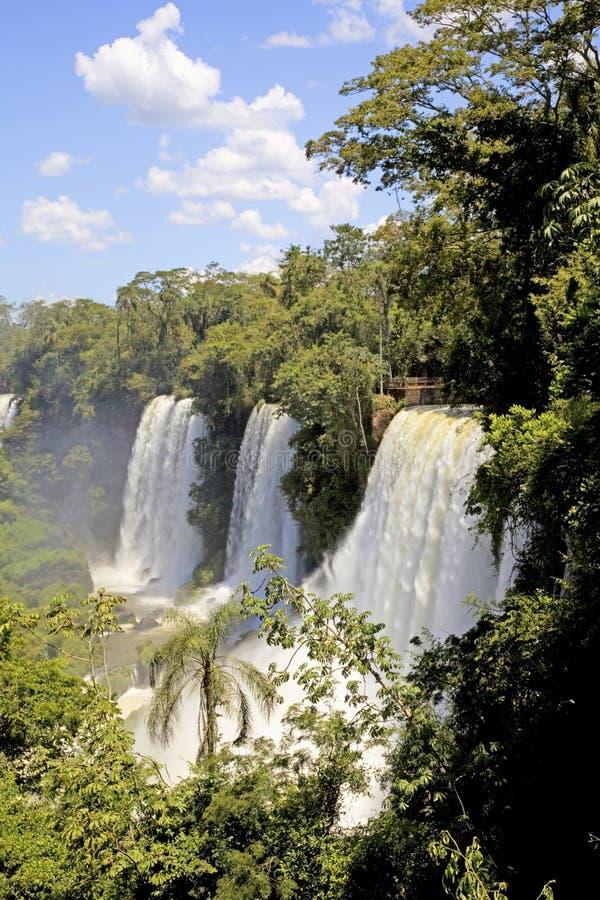 Iguazudalingen, Argentinië, Zuid-Amerika royalty-vrije stock foto's