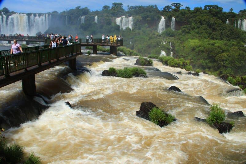 Iguazuet Falls - sikt från den Brasilien sidan royaltyfria bilder
