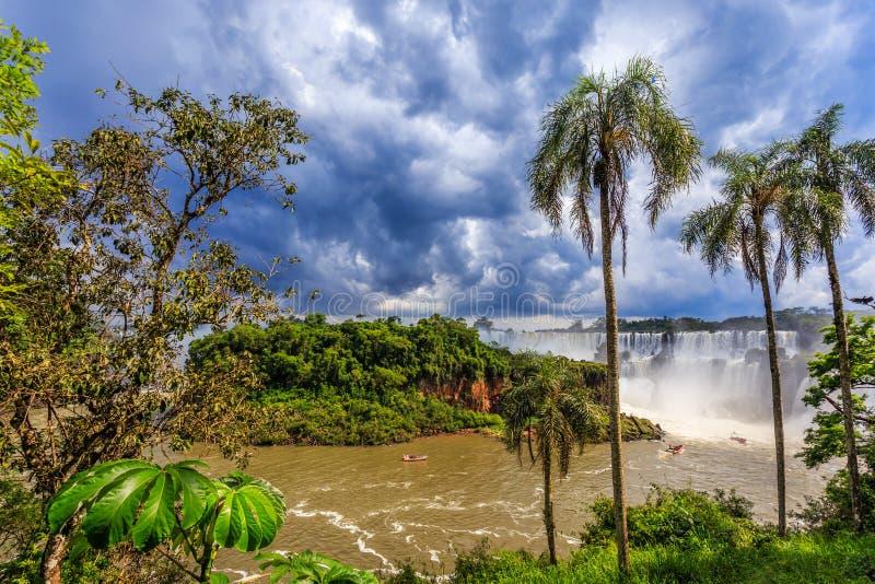 Iguazy下跌从密林的全景视图有棕榈和云彩的 免版税库存图片