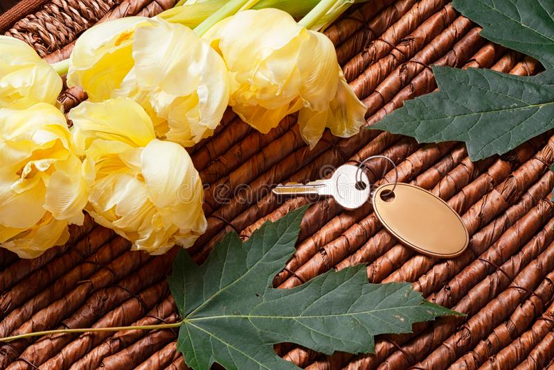 Ihr Schlüssel, gelben Tulpen, Grünblätter und hölzerner Hintergrund stockfotos