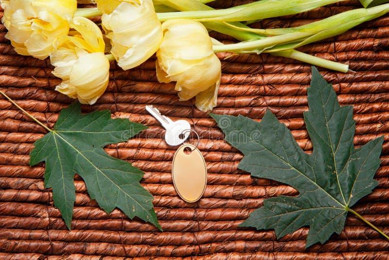 Ihr Schlüssel, gelben Tulpen, Grünblätter und hölzerner Hintergrund lizenzfreie stockfotos