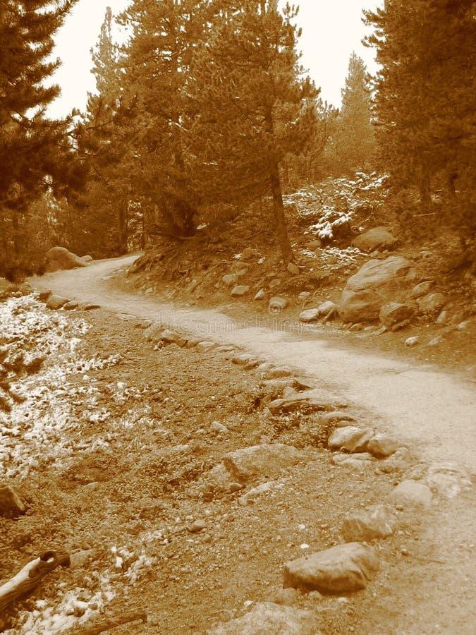 iii岩石山的路径 库存图片