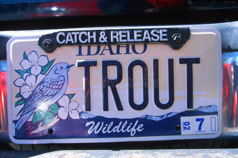 Ijdelheidsnummerplaat - Idaho stock fotografie