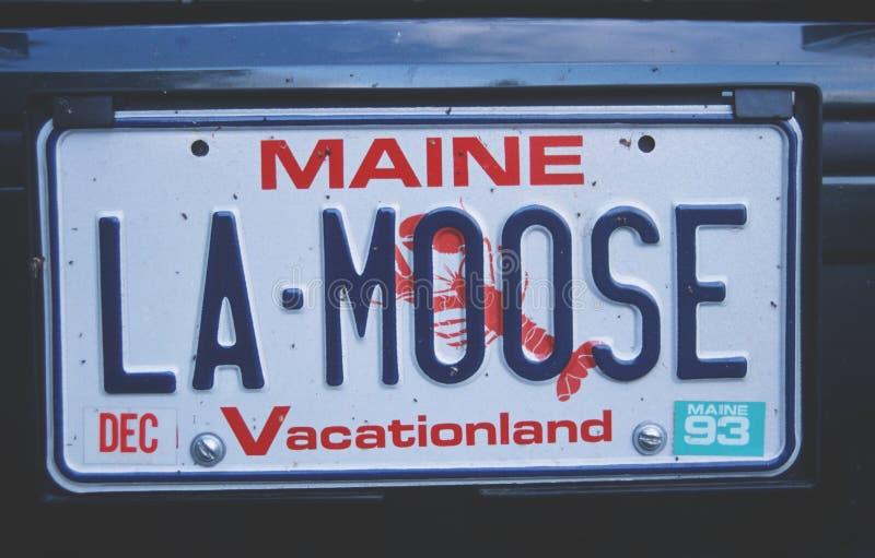 Ijdelheidsnummerplaat - Maine stock afbeeldingen