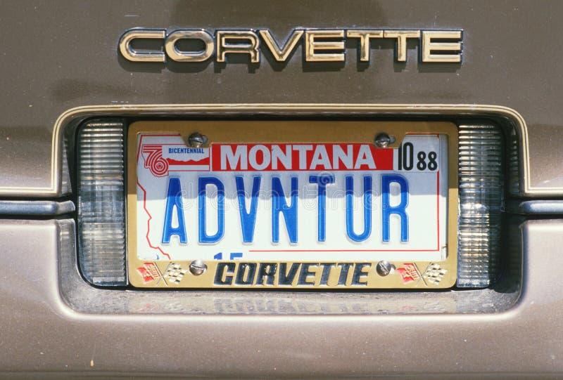 Ijdelheidsnummerplaat - Montana stock fotografie