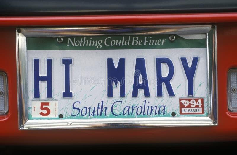 Ijdelheidsnummerplaat - Zuid-Carolina royalty-vrije stock afbeeldingen