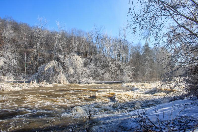 Ijs-behandelde bomen op de banken van de Housatonic-Rivier stock afbeelding