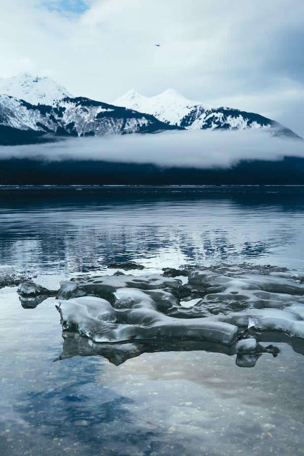 Ijs langs Chilkat, Haines Alaska stock foto's