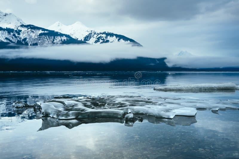 Ijs langs Chilkat, Haines Alaska 2 stock afbeelding
