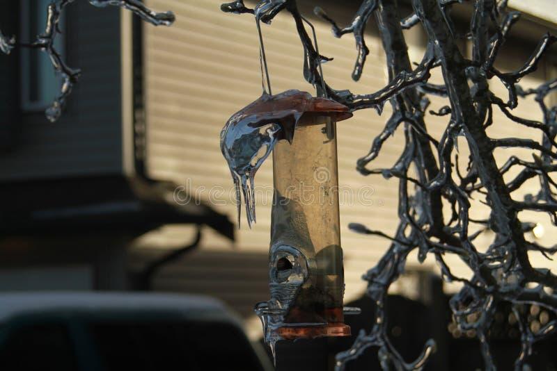 Ijs met een laag bedekte vogelvoeder en takken royalty-vrije stock foto