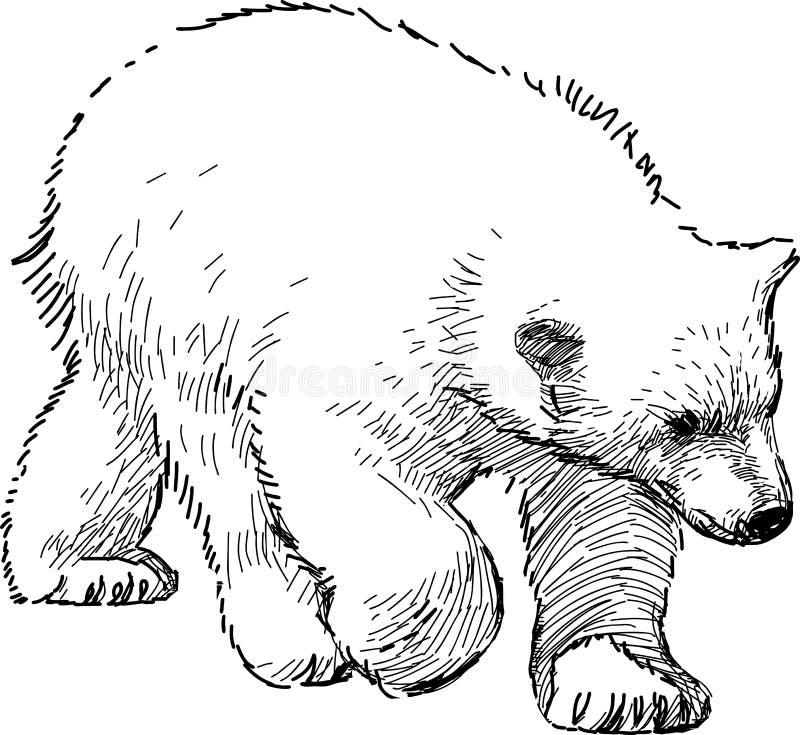 Ijsbeerwelp vector illustratie