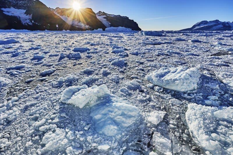 Ijsberg die in de fjord van Groenland drijven stock fotografie