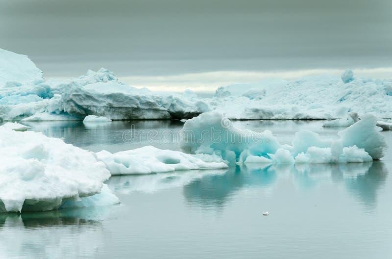 Ijsbergen die op water drijven stock afbeeldingen