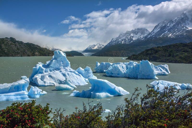 Ijsbergen in Grey Lake - Patagonië - Chili royalty-vrije stock foto