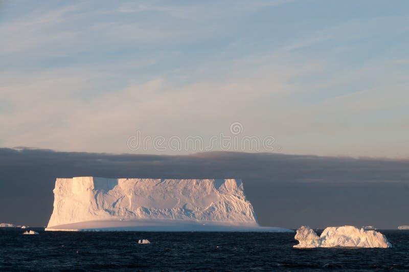 Ijsbergen in het avond licht stock foto's