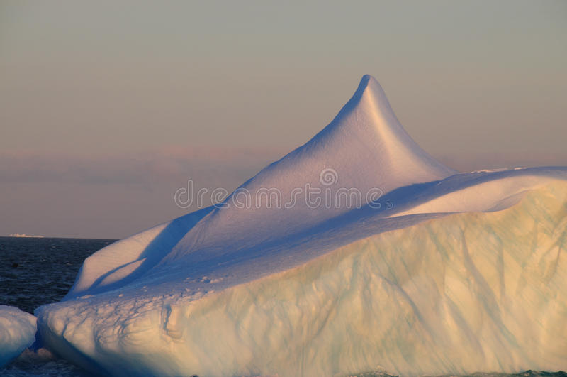Ijsbergen in het avond licht stock afbeelding
