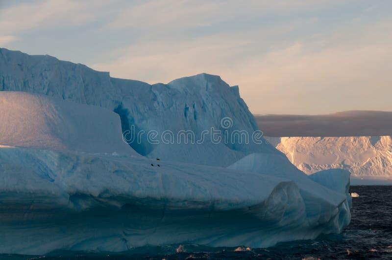 Ijsbergen in het avond licht royalty-vrije stock afbeelding