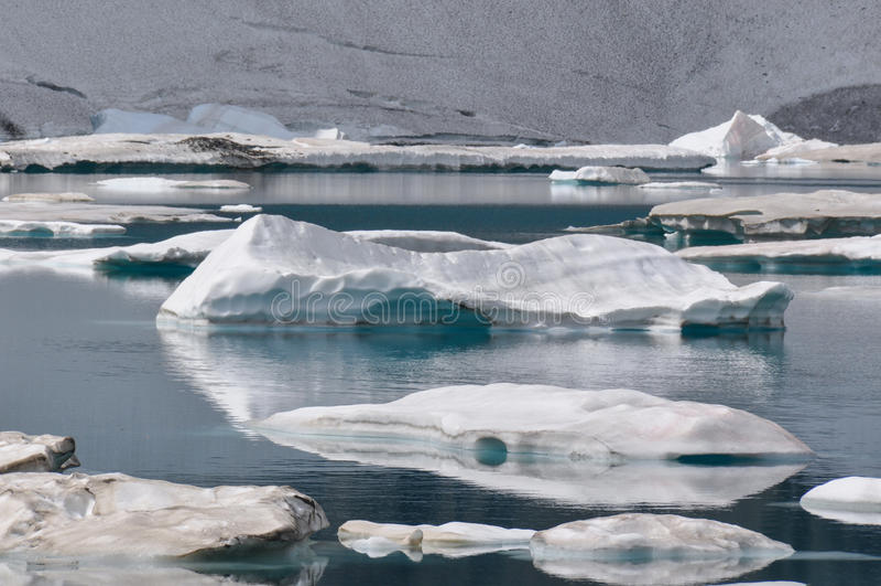 Ijsbergsleep in Gletsjer Nationaal Park, Montana, de V.S. stock foto's