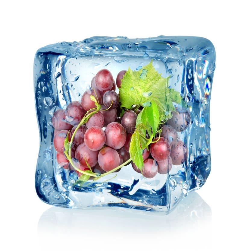 Ijsblokje en blauwe druiven royalty-vrije stock foto