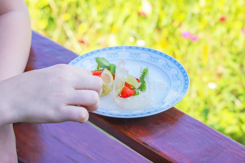 Ijsblokje met aardbei, citroen en muntbladeren in witte plaat in openlucht royalty-vrije stock afbeelding
