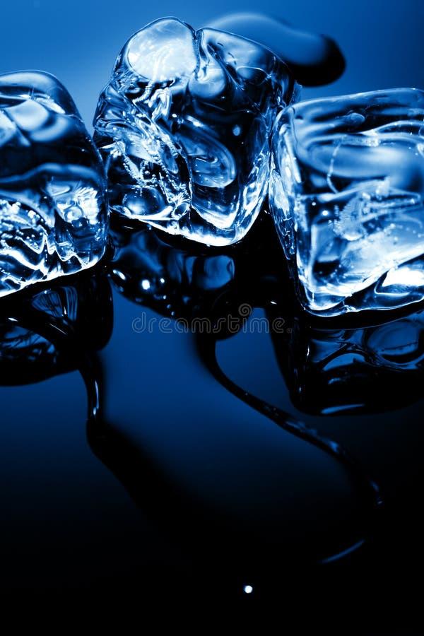 Ijsblokjes in blauw licht stock afbeelding