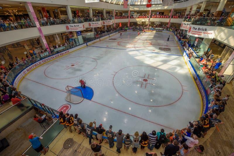 Ijshockeyarena in de Wandelgalerij West- van Edmonton royalty-vrije stock foto