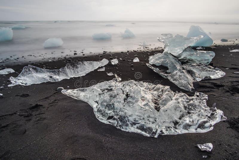 Ijsijsschol op zwart zandstrand, Diamond Beach, IJsland stock fotografie