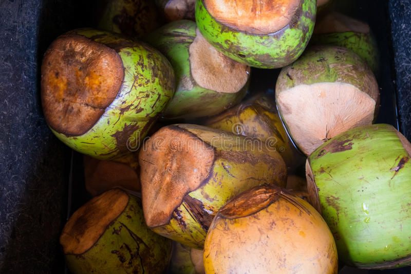 Ijskoude Kokosnoten bij Landbouwers` s Markt in Hawaï stock afbeeldingen