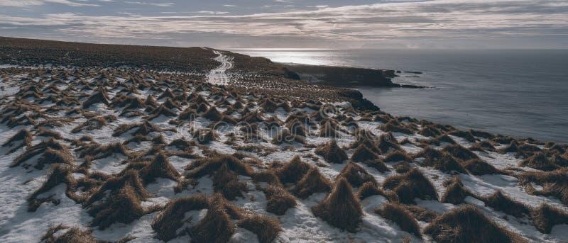 Ijslands landschap Grimsey royalty-vrije stock foto's