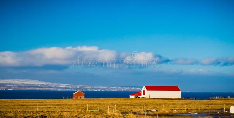 Ijslandse landbouwbedrijfhuis en loods met heldere rode dak en sneeuw GLB stock foto