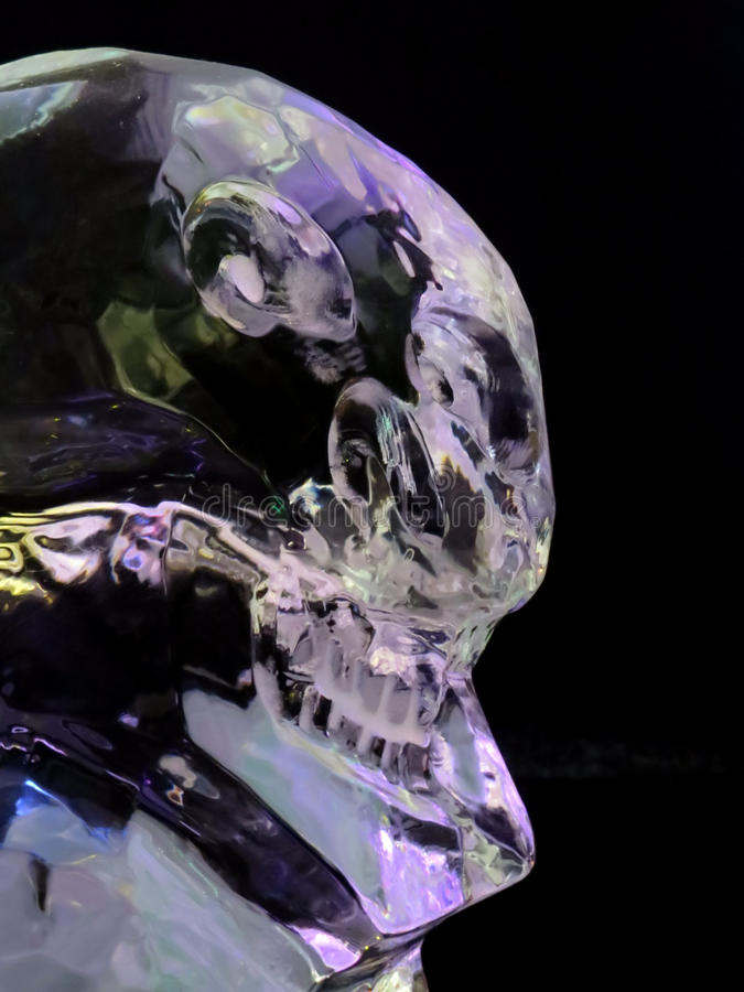 Ijsmaya schedel stock foto