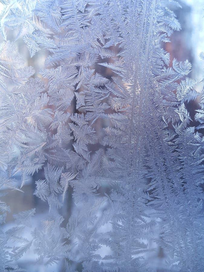 Ijspatroon op de winterglas stock afbeeldingen