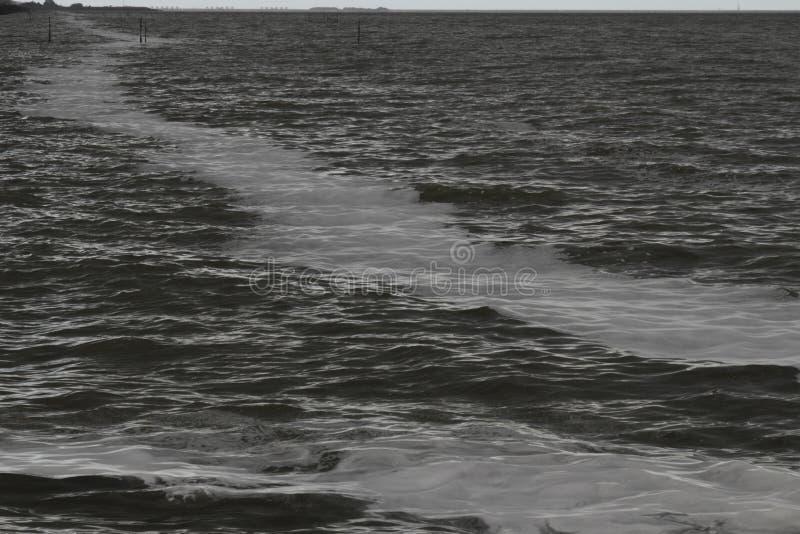 IJsselmeer темное и ветреное стоковые изображения