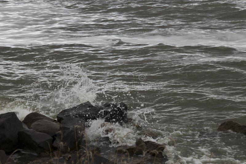 IJsselmeer темное и ветреное стоковая фотография rf