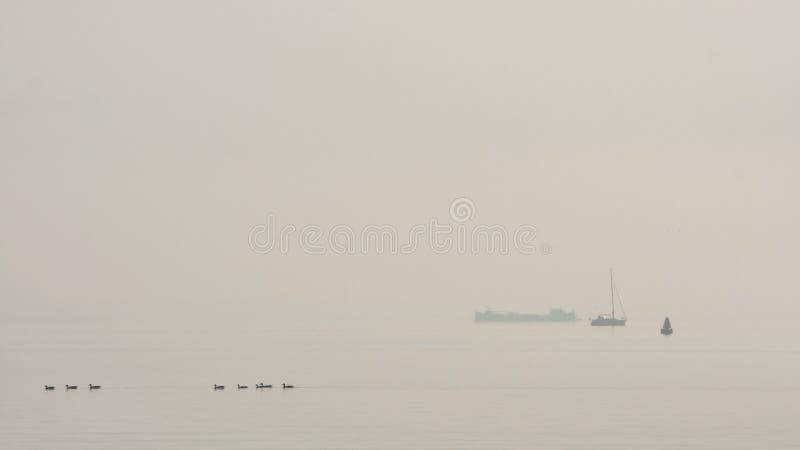 IJsselmeer, Nederland/Нидерланды стоковое изображение rf